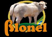 Blonel